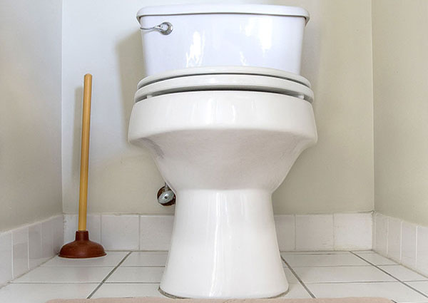 Trophy Club Clogged Toilet and Toilet Repair